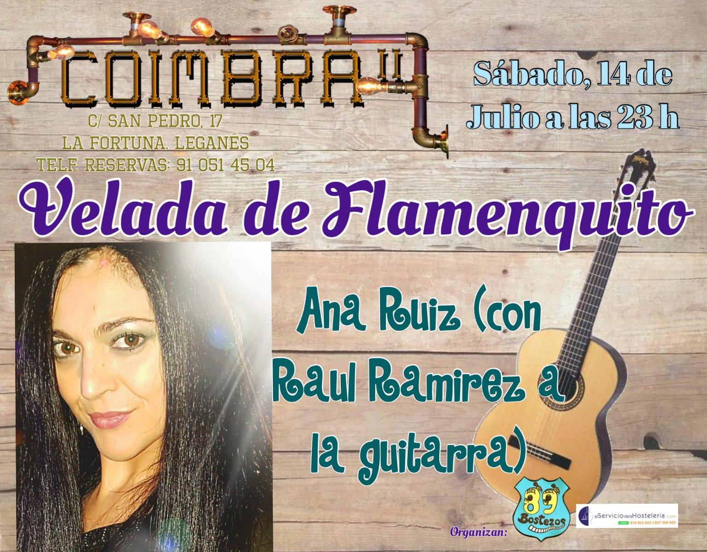 Velada de Flamenco en el Coimbra II