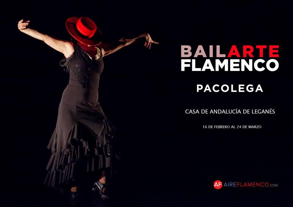 Exposición fotográfica, Bailarte Flamenco