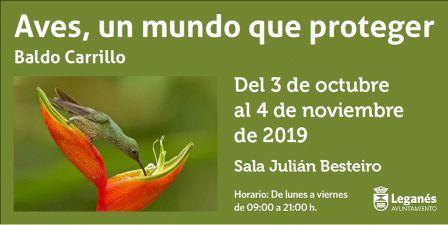 """Exposición fotográfica """"Aves, un mundo que proteger"""""""