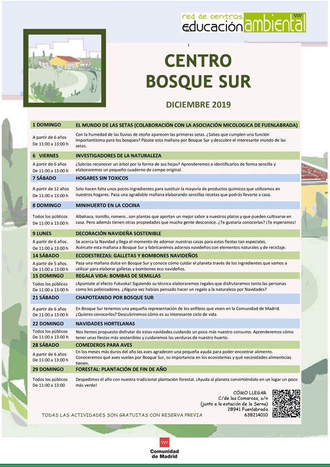 Actividades en el CEA Bosque sur en diciembre 2019