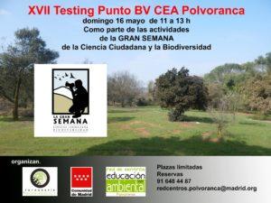 XVII-testing-punto-Bv-CEA-polvoranca - OCIOENLEGANES