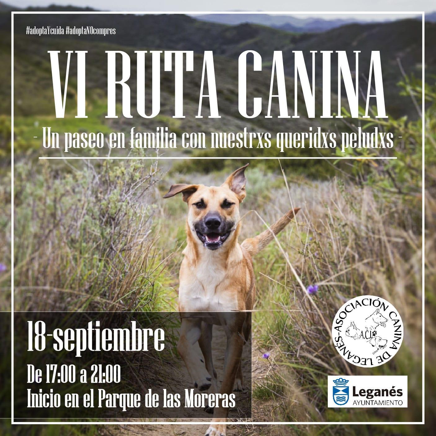 VI Ruta Canina de Leganés