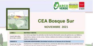 Bosque Surbosquesur CEA leganes actividades ambientales